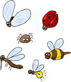 Cute cartoon bugs. Insect illustration set Stock Images