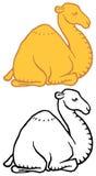 Cute cartoon camel dromedary Royalty Free Stock Images