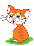 Cute cartoon cat Royalty Free Stock Photos