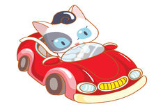 Cute cartoon cat riding a red car Stock Images