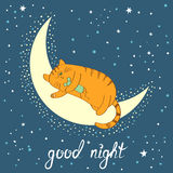 Cute cartoon cat sleeping on the moon. Good night lettering. Royalty Free Stock Photo