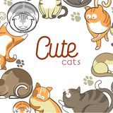 Cute cats and kittens pets playing or posing vector flat animals poster. Cute cartoon cats and kittens playing, sleeping or posing poster. Vector flat design of Royalty Free Stock Photos