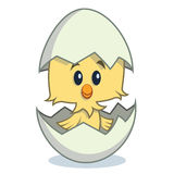 Cute cartoon chick hatching from egg Stock Photo