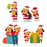 Cute cartoon Christmas Holiday,animal  santa, Stock Photo