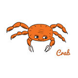 Cute cartoon crab. Ocean animal vector illustration. Sea creature in a funny, hand drawn style Royalty Free Stock Photography