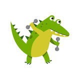 Cute cartoon crocodile character raising dumbbells vector Illustration Stock Images