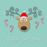 Cute cartoon deer with curly horns, red hat and hanging stick candy cane. Merry christmas blue background card Flat design Royalty Free Stock Images