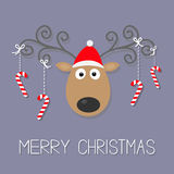 Cute cartoon deer with curly horns, red hat and hanging stick candy cane. Merry christmas violet background card Flat design Stock Photos