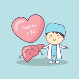 Cute cartoon doctor with liver. Great for health life concept Royalty Free Stock Photo