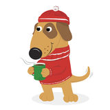 Cute cartoon dog in a cap and sweater and coffee. Christmas card with cute cartoon dog warm hat and sweater and coffee. On a white background. Vector Stock Images