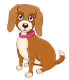 Cute cartoon doggy with collar on white royalty free illustration
