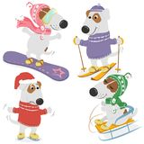 Dogs and winter sports. Cute cartoon dogs in clothing and winter sports on a white background. Vector illustration Royalty Free Stock Image
