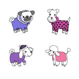 Cute cartoon dogs in winter clothes. Stock Image