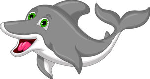 Cute Cartoon Dolphin isolated Royalty Free Stock Images