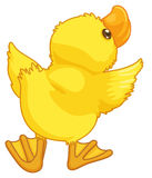Cute cartoon duck Royalty Free Stock Photography