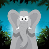Cute cartoon elephant in front of jungle background Stock Photo