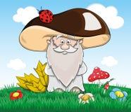 Cute cartoon fabulous old man mushroom Stock Images