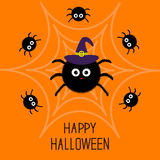Cute cartoon fluffy spider set on the web. Witch hat. Halloween card. Flat design. Royalty Free Stock Images