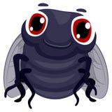 Cute Cartoon Fly Royalty Free Stock Photo