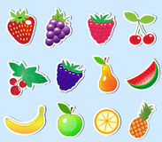 Cute cartoon fruit sticker set, vector illustration royalty free illustration