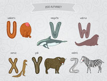 Cute cartoon funny zoo alphabet in vector. U, v, w, x, y, z letters. Uakaris, vaquita, walrus, xerus, yak, zebra. Design in a colo Stock Photo