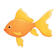 Cute cartoon goldfish Royalty Free Stock Images