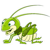 Cute cartoon grasshopper Stock Photos