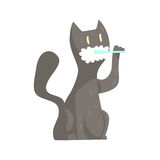 Cute cartoon grey cat brushing teeth with tooth brush and paste colorful character, animal grooming vector Illustration. On a white background royalty free illustration