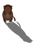Cute cartoon groundhog Stock Image
