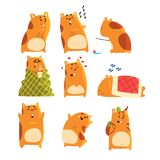 Cute cartoon hamster characters set, funny animal showing various actions and emotions vector Illustrations. On a white background Stock Photography
