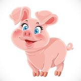 Cute cartoon happy baby pig Royalty Free Stock Image