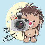 Cute cartoon Hedgehog with a camera. On a cheese background Vector Illustration