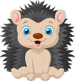Cute cartoon hedgehog child Stock Photos