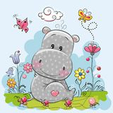 Cute Cartoon Hippo. With flowers and butterflies on a meadow Stock Images