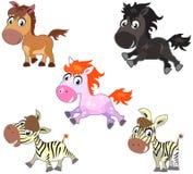 Cute cartoon horses. Vector set of funny cute cartoon horses. Mustang, pony, colt, zebra royalty free illustration