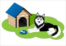 Cute cartoon husky next to dog house. Vector illustration Stock Photos
