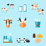 Cute cartoon illustration. Of a cow and products we gain from her vector illustration