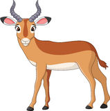 Cute Cartoon impala. Illustration of cute Cartoon impala Stock Photography