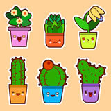 Cute cartoon kawaii set of plant, cactus succulents and flowers with funny faces Flat design Vector Stock Image