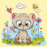 Cute Cartoon Kitten. With flowers and butterflies on a meadow Royalty Free Stock Image