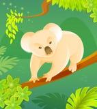 Cute cartoon koala Royalty Free Stock Image