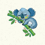 Cute cartoon koala on a tree. Vector illustration Stock Images