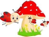Cute cartoon ladybug with red mushroom Stock Photography