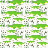 Cute cartoon little crocodile in reed isolated on white background, Vector doodle Illustration alligator, wild animal Royalty Free Stock Photos