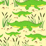 Cute cartoon little crocodile in reed isolated on yellow background, Vector doodle Illustration alligator, wild animal Stock Images