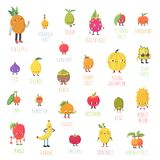 Cute cartoon live exotic fruits vector set. Funny characters in nice colors Royalty Free Stock Photo