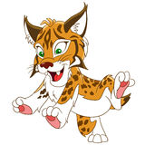Cute cartoon lynx Royalty Free Stock Photography