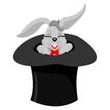A cute cartoon magicians bunny rabbit coming out of a top hat with a magic wand Stock Photography