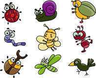 Cute cartoon of many bugs. Cute cartoon clip art collection of many bugs Royalty Free Stock Photography