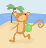 Cute cartoon monkey on the beach Royalty Free Stock Photography